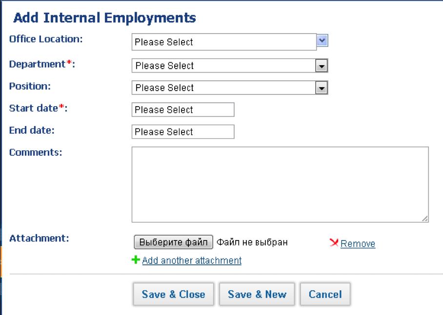 Employee Profile Summary